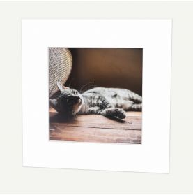12x12 Pre-cut Mat with Whitecore fits 8x8 Picture