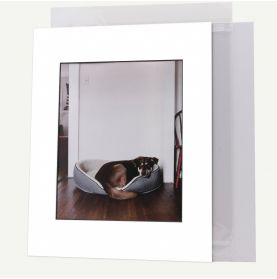 Pack of 50, 11x14 Pre-cut Mat with Blackcore fits 8x10 Picture + White Foam Board + Bags.