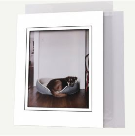 11x14 Pre-cut V-Groove Mat with Whitecore fits 8x10 Picture + Backing + Bag