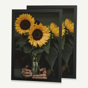 20x30 Black MDF Frame for 20x30 Picture, Set of 2