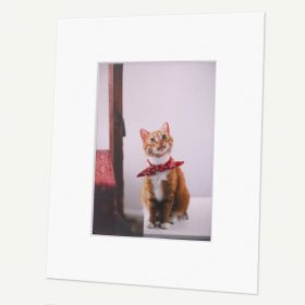 Pack of 100, 8x10 Pre-cut Mat with Whitecore fits 5x7 Picture