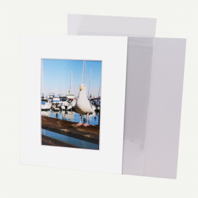 Pack of 50, 8x10 Pre-cut Mat with Whitecore fits 5x7 Picture + White Foam Board + Bags