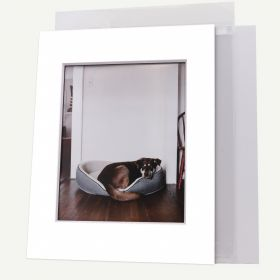 Pack of 50, 11x14 Pre-cut 8-PLY Mat with Whitecore fits 8x10 Picture + Backing + Bags.