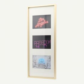 """8x20 Gold Aluminum 3/8"""" Frame for 4x6 Picture and Ivory Mat"""