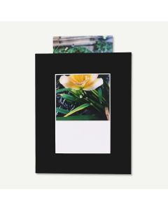 Pack of 25, Black 8x10 Slip-In Mat with Whitecore fits 5x7 Picture + Bags