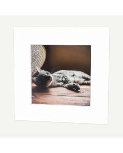 12x12 Pre-cut Conservation Archival Mat with Whitecore fits 8x8 Picture