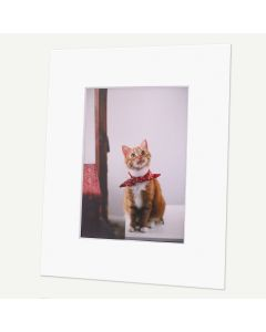 Pack of 50, 8x10 Pre-cut Mat with Whitecore fits 5x7 Picture