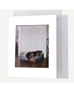 Pack of 100, 11x14 Pre-cut Mat with Blackcore fits 8x10 Picture + White Foam Board + Bags.