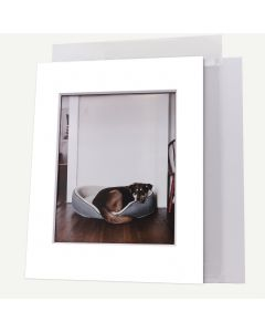 Pack of 100, 11x14 Pre-cut 8-PLY Mat with Whitecore fits 8x10 Picture + Backing + Bags.
