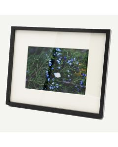 """8x10 Black Aluminum 3/8"""" Frame for 5x7 Picture and Ivory Mat"""